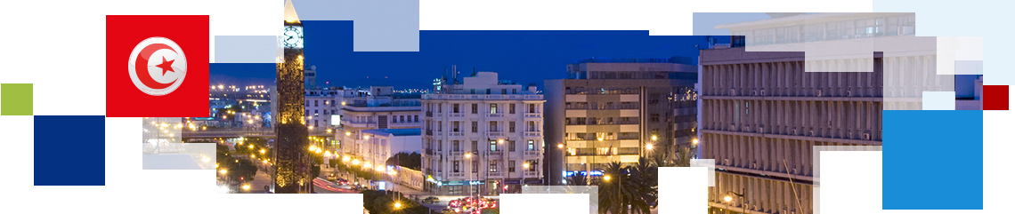 TUNISIA 2020 INTERNATIONAL CONFERENCE TUNIS, 29 & 30 NOVEMBER, 2016